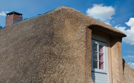 dikes: Thatched roof