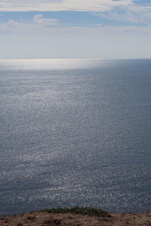 boobies: Helgoland in the Northsea