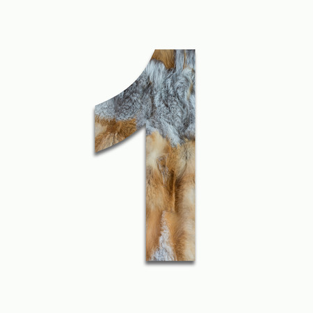 1 red fox fur in a font trained Stock Photo