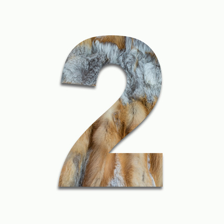 luxuriously: 2 red fox fur in a font trained