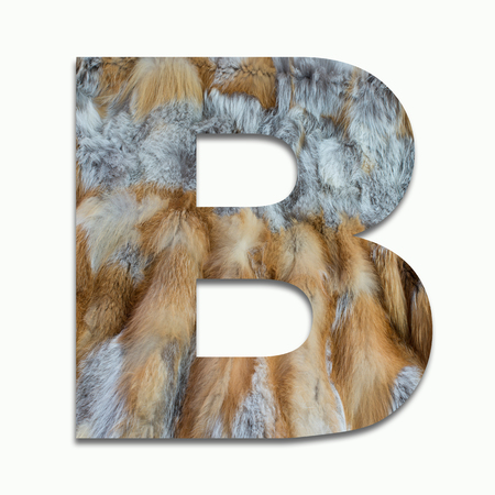 fox fur: B red fox fur in a font trained Stock Photo