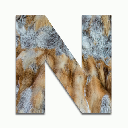 N red fox fur in a font trained Stock Photo