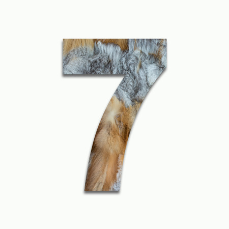 luxuriously: 7 red fox fur in a font trained