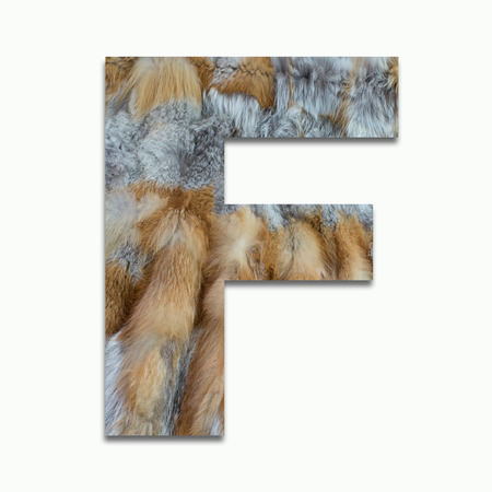 F red fox fur in a font trained
