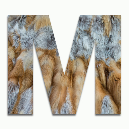 M red fox fur in a font trained Stock Photo