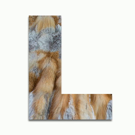 luxuriously: L red fox fur in a font trained