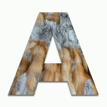 softy: A red fox fur in a font trained Stock Photo