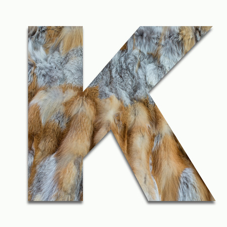 K red fox fur in a font trained