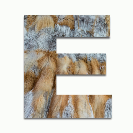 luxuriously: E red fox fur in a font trained Stock Photo