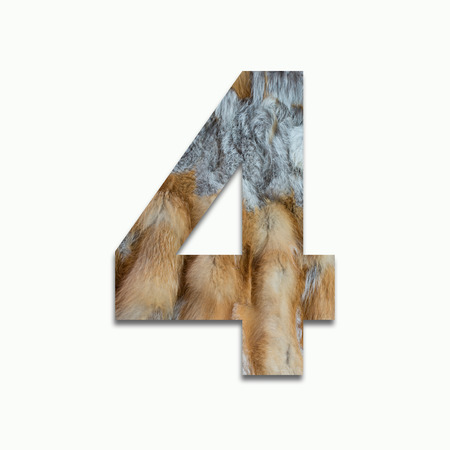 fox fur: 4 red fox fur in a font trained Stock Photo