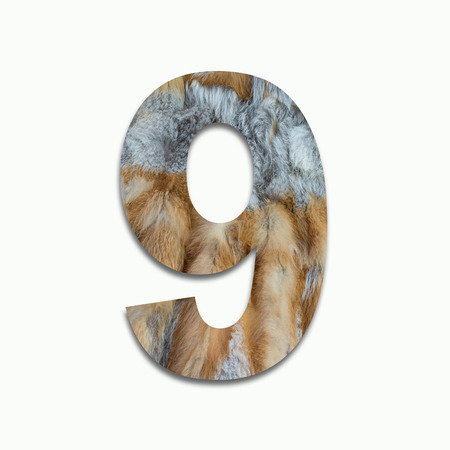 luxuriously: 9 red fox fur in a font trained Stock Photo