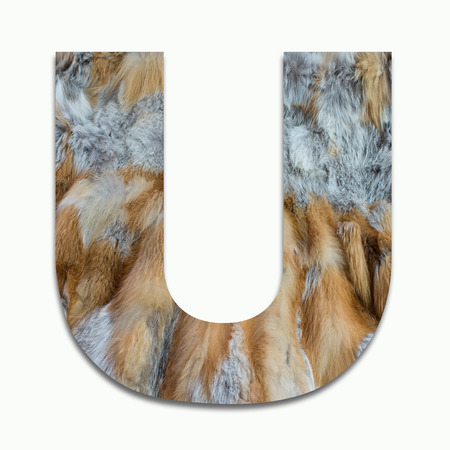 luxuriously: U red fox fur in a font trained