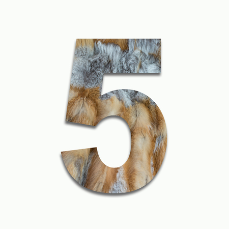 5 red fox fur in a font trained Stock Photo