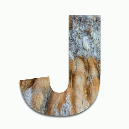 J red fox fur in a font trained