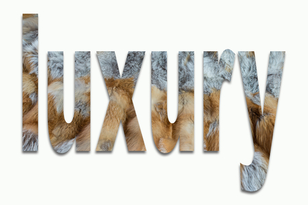 luxuriously: luxury red fox fur in a font trained Stock Photo