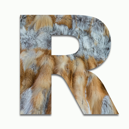 R red fox fur in a font trained Stock Photo