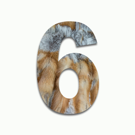 luxuriously: 6 red fox fur in a font trained Stock Photo