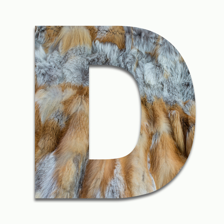 D red fox fur in a font trained Stock Photo
