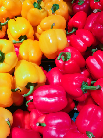 Colorful bell pepper Stock Photo