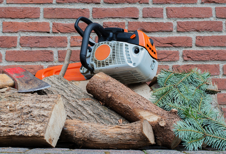 filings: Gasoline driven chain saw on a wooden stack
