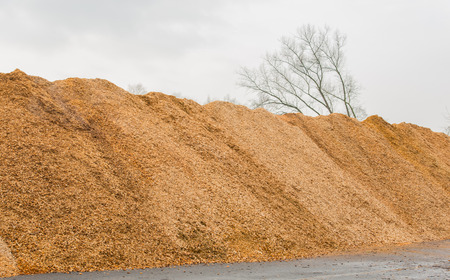 Big pile of wood shavings and wood mulch Stock Photo
