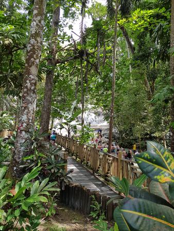 Dunn River Falls are waterfalls in Ocho Rios, Jamaica Stock Photo