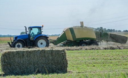 Baler at the Hay Harvest on a Field
