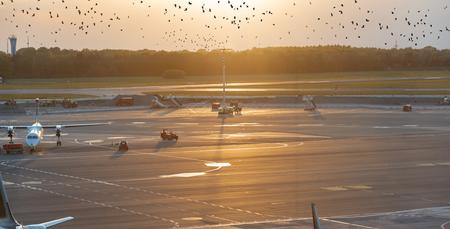 Airplane handling at a gate at Hamburg airport