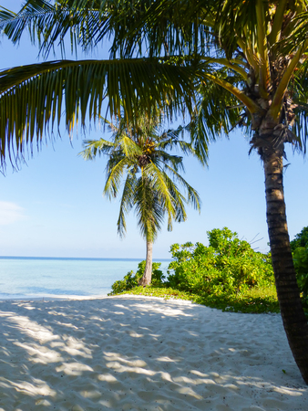 White sand and turquoise waters on the Indian Ocean beach in the Maldives Stock Photo
