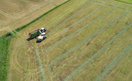 Grass harvester and tractor chop for animal feed 写真素材