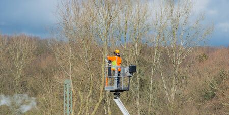 Tree care from a lift, branches are sawn off with a chainsaw