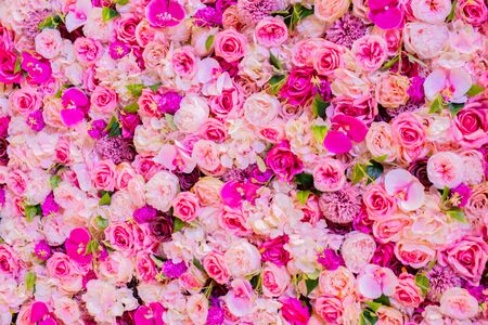 Colorful roses background for spring and summer
