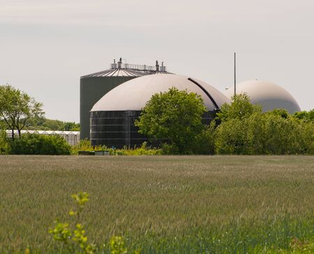 Biogas plans for power generation and energy generation during