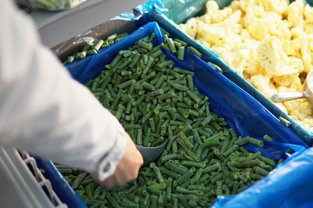 Female hand takes a scoop of green sliced frozen green beans from a freezer in a self-service store. 版權商用圖片