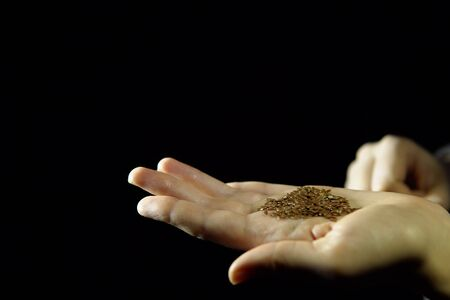 Close-up of human fingers holding handful of seed of flax in hand on black background, unrecognizable person.