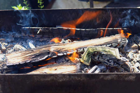 paper hundred-dollar bill burns with the firewood