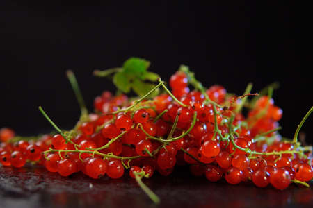 bunch of redcurrant berries lies on dark plate on black background