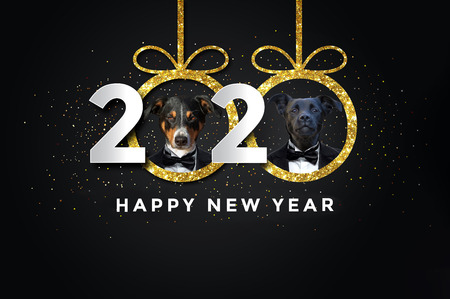Happy new year 2020 with two Dogs Stock Photo