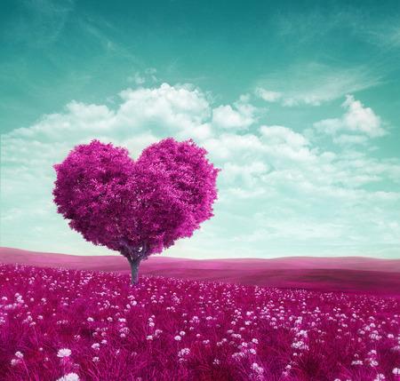 Purple heart tree wallpaper Reklamní fotografie