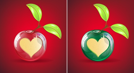 apple with cutted heart Vector