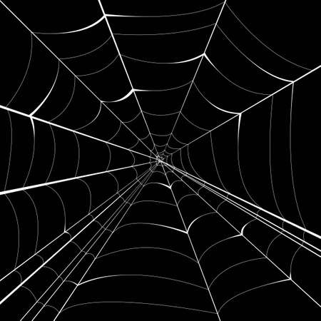cobwebby: spider vector background