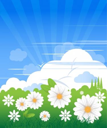 적란운: 맑은 날 및 camomiles에서 구름과 푸른 하늘