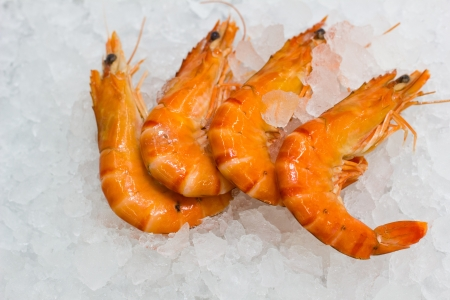 some shrimps on a white ice background photo