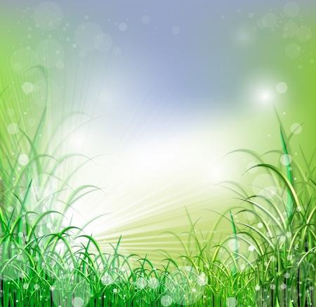 himlen: Beatiful grönt fält med oskärpa himmel och soluppgång ray Stockfoto