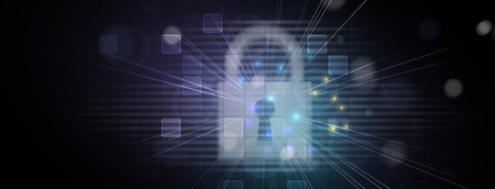 Cyber security and information or network protection.