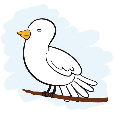 paloma caricatura: Linda Paloma blanca, sentado en una rama mirando hacia arriba. No degradados.