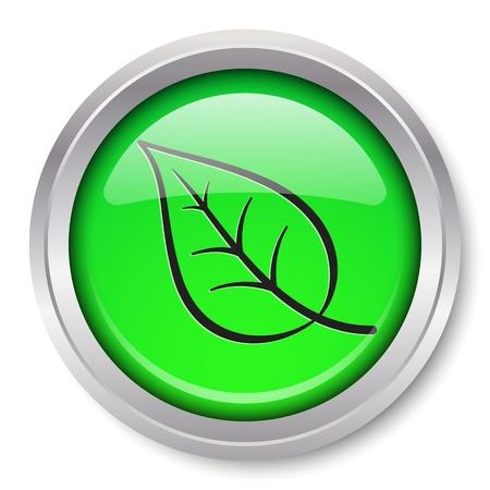 desarrollo sustentable: Icono de la hoja del bot�n met�lico brillante