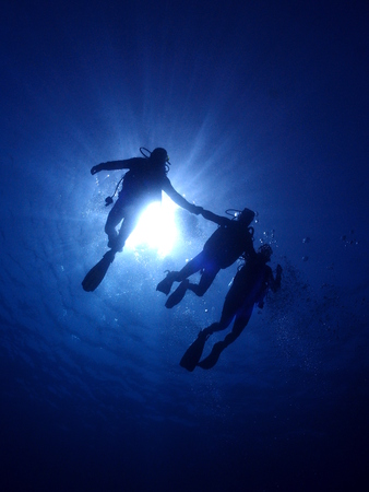 Three scuba divers silhouetted against the sun