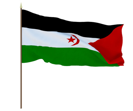 National flag of Sahrawi Arab Democratic Republic. Background for editors and designers. National holiday Stockfoto
