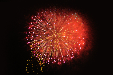 An outbreak of bright pink and red firework lights. Halloween, Christmas, Independence Day, New Year.